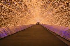 Nagoya Japan Nabana ingen Sato trädgård på natten i vinter Arkivbild