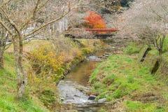 Nagoya Obara Autumn Landscape med den sakura blomningen Arkivfoton