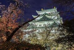 Nagoya slott 10 Arkivfoto