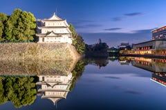 Nagoya slott Japan Royaltyfri Bild
