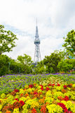 Nagoya TV Tower Bed Flowers Downtown Park Stock Image