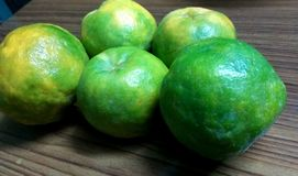 Nagpur Oranges. A still of freshly sprout Nagpur oranges of the summer season of India. Oranges of Nagpur city of India are very famous royalty free stock images