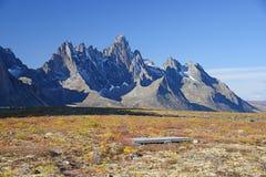 Nagrobek Yukon Obraz Royalty Free