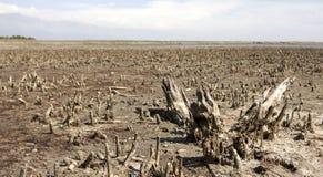 NAGRZANIA i zanieczyszczenia globalny pojęcie fotografia royalty free