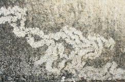 Nah oben alten Abdruck von Termiten auf der Wand masern stockbild