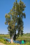 Nahal Kibbutzim Nature Reserve, Israel Stock Image