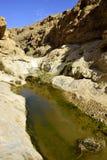 Nahal Zafit in Negev desert. Stock Images