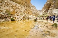 Nahal Zin, Ein Akev in Negev-Woestijn, Israël Royalty-vrije Stock Afbeelding