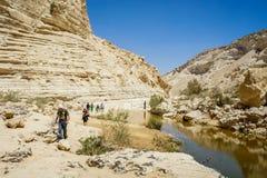 Nahal Zin, Ein Akev w pustynia negew, Izrael Obraz Royalty Free