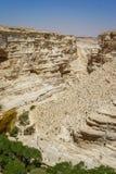 The Nahal Zin in Negev Desert, Israel Stock Image