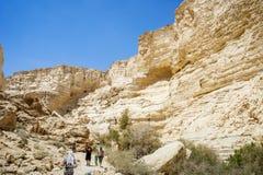 Nahal Zin in Negev-Woestijn, Israël Royalty-vrije Stock Foto's