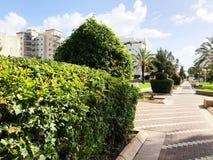 NAHARIJA, ISRAEL 9. MÄRZ 2018: Straße in der Mitte von Naharija, Israel Stockbilder