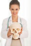 Nahaufnahme auf Doktorfrau, die menschlichen Schädel zeigt Lizenzfreie Stockfotografie