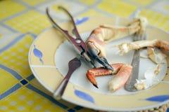 Nahaufnahme auf Krabbe mit Hintergrund der Geräte auf dem Tisch Stockbilder