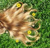 Nahaufnahme auf schönem Haar Stockbilder