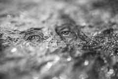 Nahaufnahme Benjamin Franklin auf dem abstrakten Hintergrund der 100-Dollar-Schmutzkunst Dunkel, düster, zerknittert stockbild