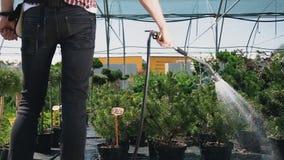 Nahaufnahme Bewässerungsgarten des glücklichen Gärtners des jungen Mannes mit Schlauch stock footage