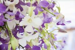 Nahaufnahme blüht Blumenstrauß Stockfoto
