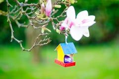Nahaufnahme bunten Ostereies im Vogelhaus auf blühendem Magnolienbaum Traditionelles Symbol für Christen und katholisch lizenzfreie stockbilder