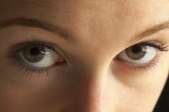 Nahaufnahme der Augen stockbild