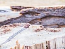 Nahaufnahme der Bauholzbeschaffenheit und des undeutlichen Hintergrundes Lizenzfreies Stockbild