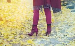 Nahaufnahme der Beine der Frau auf einer Bahn im Herbst Stockfotografie