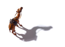 Nahaufnahme der braunen Kamelandenkens gebildet vom Leder Lizenzfreie Stockbilder