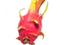 Nahaufnahme der Drachefrucht lokalisiert Stockbild