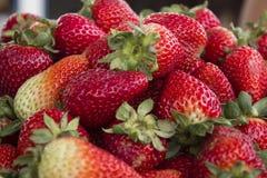 Nahaufnahme der frischen Erdbeeren Stockbilder