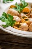 Nahaufnahme der gebackenen Schnecken mit parsleyand Knoblauchbutter Stockbilder