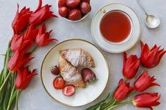 Nahaufnahme der heißen Tasse Tee mit den Erdbeerhörnchen, die durch schöne rote Tulpe umgeben werden, blüht auf grauem Hintergrun Lizenzfreie Stockbilder