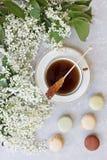 Nahaufnahme der heißen Tasse Tee mit den süßen Makronen umgeben durch schöne weiße blühende Apfelbaumaste auf einem grauen Hinter Stockfotos