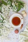 Nahaufnahme der heißen Tasse Tee mit den süßen Makronen umgeben durch schöne weiße blühende Apfelbaumaste auf einem grauen Hinter Lizenzfreie Stockbilder