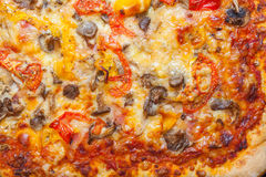 Nahaufnahme der italienischen Pizza Lizenzfreies Stockbild
