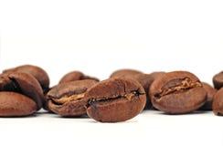 Nahaufnahme der Kaffeebohnen Stockfoto