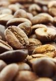 Nahaufnahme der Kaffeebohnen stockbild