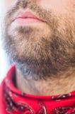 Nahaufnahme der Lippen und des Bartes des Mannes Stockbild