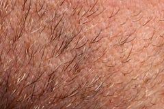 Nahaufnahme der menschlichen Haut Stockfotos