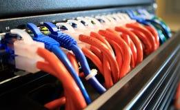 Nahaufnahme der Netz-Seilzüge im Server-Raum Lizenzfreie Stockfotografie