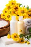 Nahaufnahme der Produkte für Badekurort und Karosserie interessieren sich Lizenzfreies Stockbild