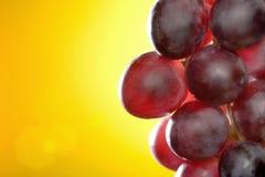 Nahaufnahme der roten Trauben lizenzfreie stockfotos