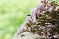 Nahaufnahme der trockenen Blumenzusammensetzung Lizenzfreie Stockfotos