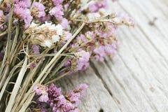 Nahaufnahme der trockenen Blumenzusammensetzung Lizenzfreies Stockbild