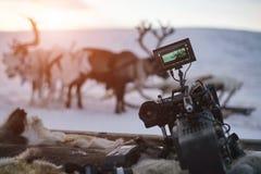 Nahaufnahme der Videokamera auf Hintergrund von Winterrotwild und -sonnenuntergang stockfotografie