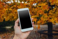 Nahaufnahme der weiblichen Hand unter Verwendung eines intelligenten Telefons stockfotos