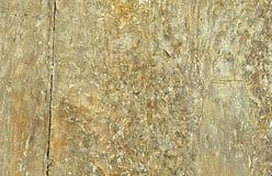 Nahaufnahme des alten hölzernen Plankebeschaffenheitshintergrundes Stockbilder