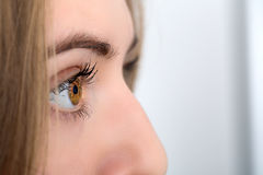 Nahaufnahme des Auges einer Frau Lizenzfreie Stockbilder