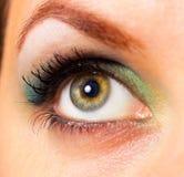 Nahaufnahme des Auges einer schönen Frau Stockfotografie