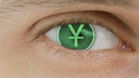 Nahaufnahme des Auges mit dem Computertext bedeckt Herein summen centr laut Yuan China lizenzfreie abbildung