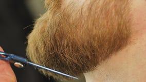 Nahaufnahme des Bartschusses eines Mannes von einem niedrigeren Winkel, wie mit Scheren, Friseursalon, Mannschönheitssalon getrim stock video footage
